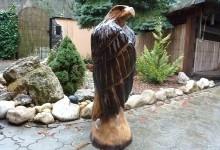 Drevený orol