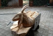 Drevená koza