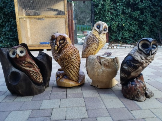 Drevené sochy zvierat (sovy)