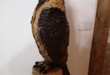 drevený papagáj