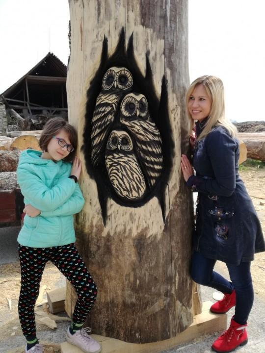 drevené sovy