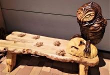 Drevená lavica so sovou